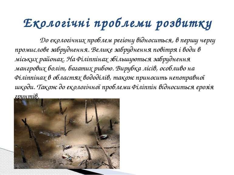 До екологічних проблем регіону відноситься, в першу чергу промислове забрудне...