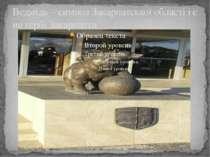 Ведмідь – символ Закарпатської області і є на гербі Закарпаття.