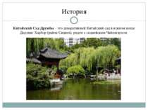 История Китайский СадДружбы– этодекоративный Китайский садвюжном конце Д...