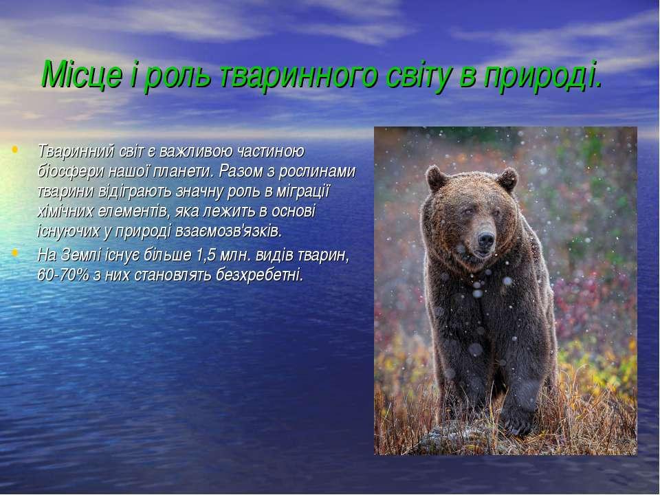 Місце і роль тваринного світу в природі. Тваринний світ є важливою частиною б...