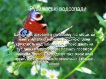 Русилівські водоспади Це чарівне, заховане в глибокому лісі місце, де навіть ...