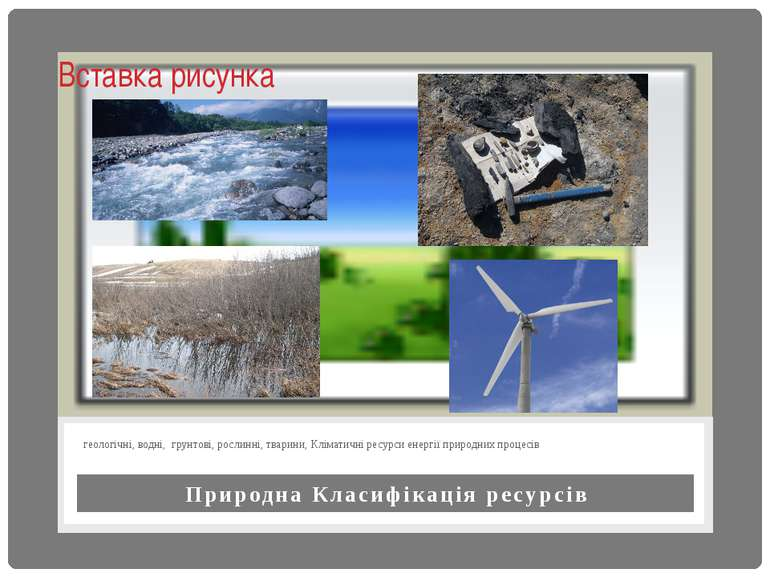 Природна Класифікація ресурсів геологічні, водні, грунтові, рослинні, тварини...