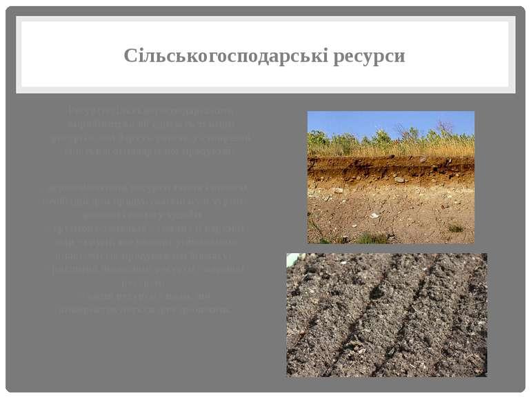 Сільськогосподарські ресурси Ресурси сільськогосподарського виробництва об'єд...
