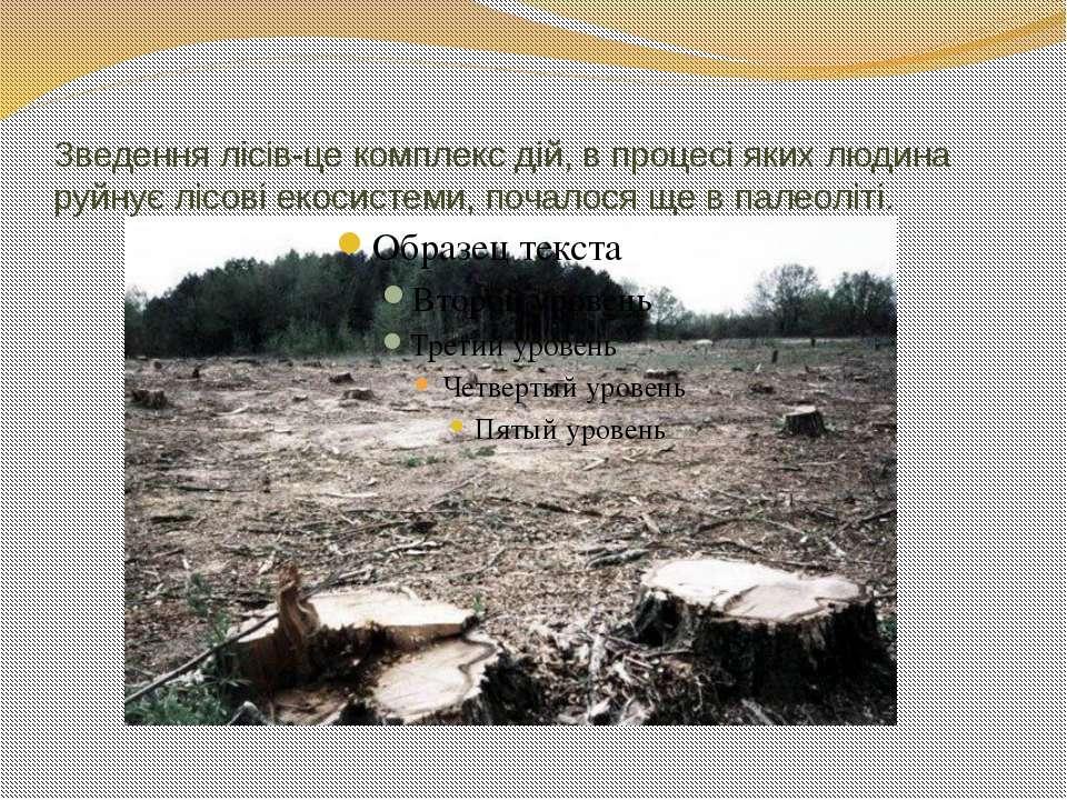 Зведення лісів-це комплекс дій, в процесі яких людина руйнує лісові екосистем...