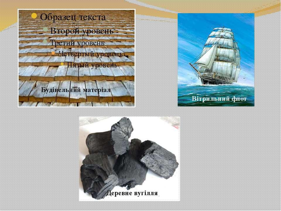 Будівельний матеріал Вітрильний флот Деревне вугілля