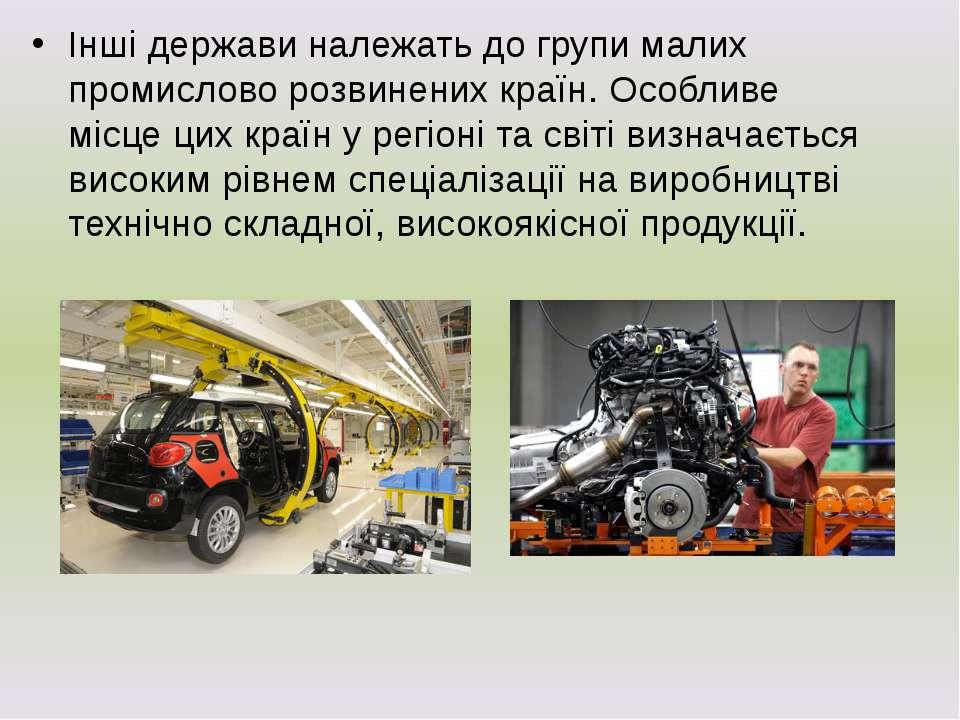 Інші держави належать до групи малих промислово розвинених країн. Особливе мі...
