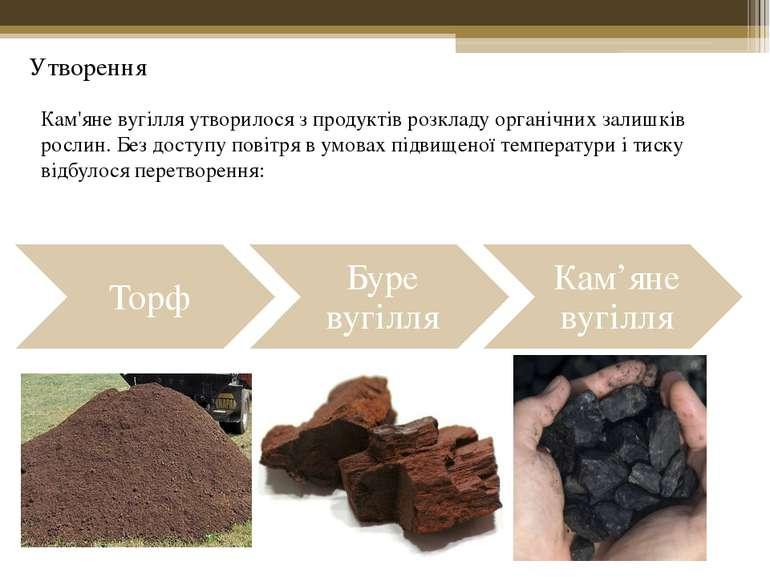 Кам'яне вугілля утворилося з продуктів розкладу органічних залишків рослин. Б...