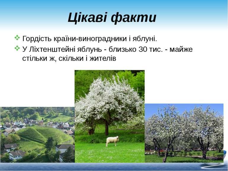 Цікаві факти Гордість країни-виноградники і яблуні. У Ліхтенштейні яблунь - б...
