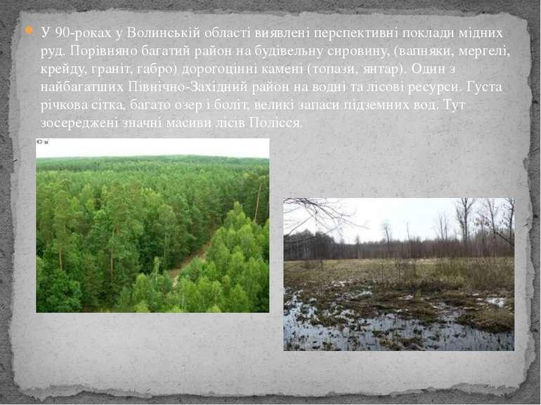 У 90-роках у Волинській області виявлені перспективні поклади мідних руд. Пор...