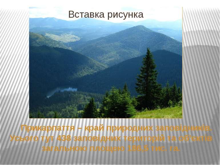 Прикарпаття – край природних заповідників. Усього тут 438 заповідних територі...