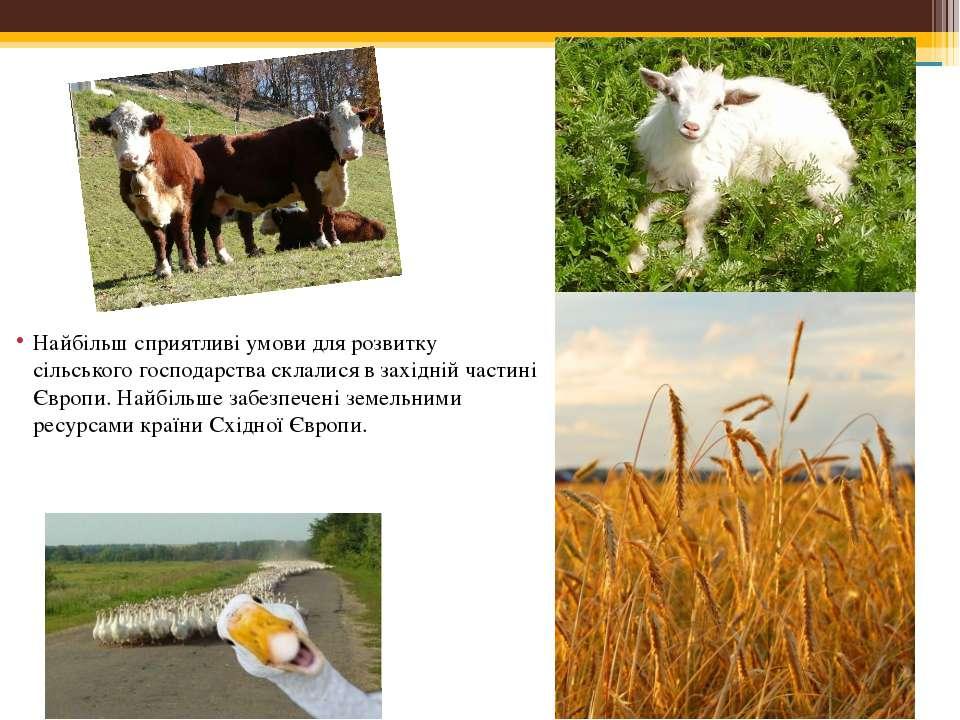 Найбільш сприятливі умови для розвитку сільського господарства склалися в зах...