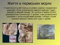 Життя в пермських морях У кам'яновугільний період на рифах широко поширилися ...