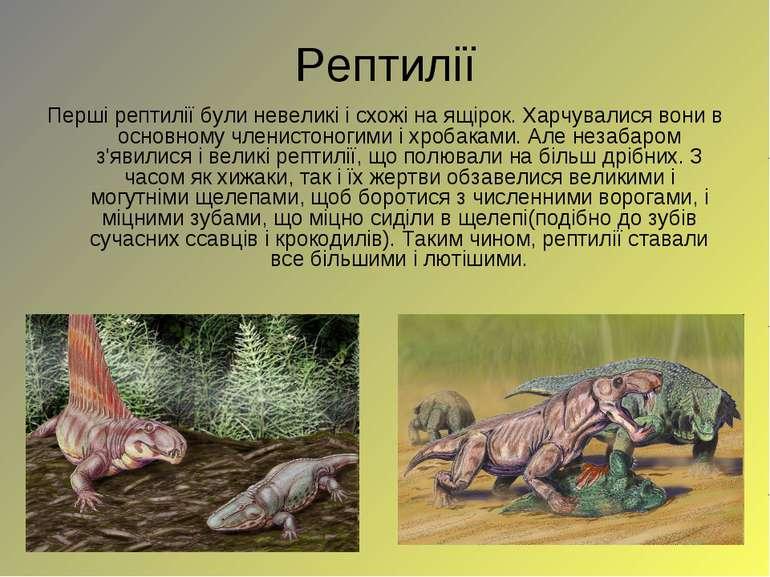 Рептилії Перші рептилії були невеликі і схожі на ящірок. Харчувалися вони в о...