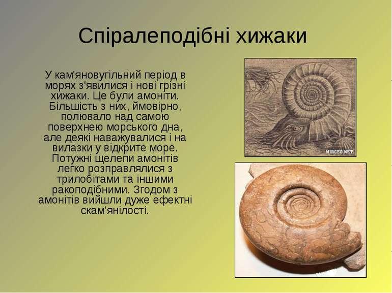 Спіралеподібніхижаки У кам'яновугільний період в морях з'явилися і нові гріз...
