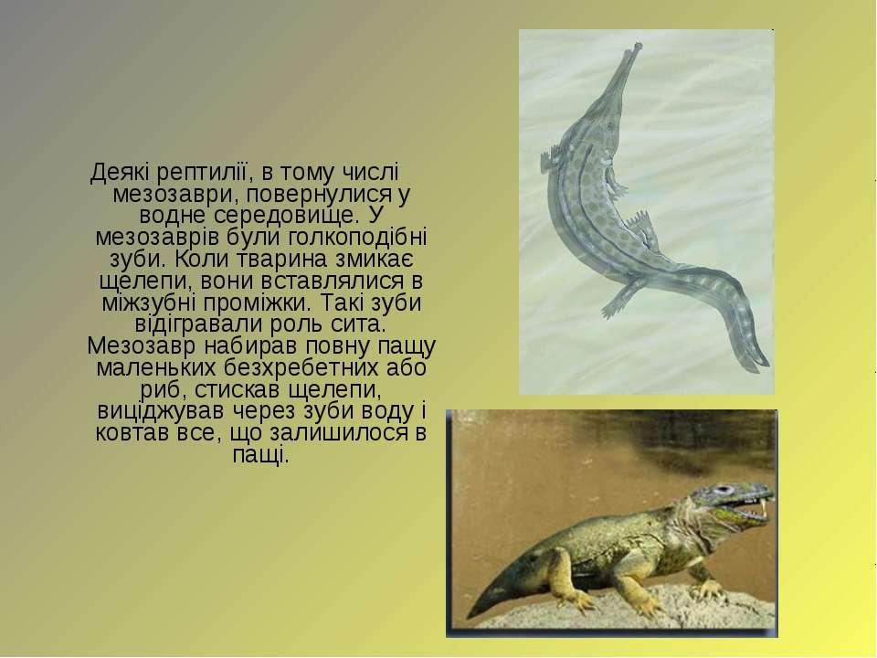 Деякі рептилії, в тому числі мезозаври, повернулися у водне середовище. У мез...
