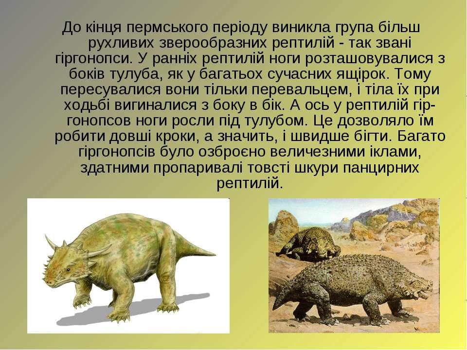 До кінця пермського періоду виникла група більш рухливих зверообразних рептил...