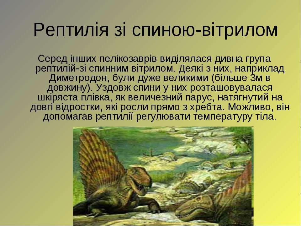 Рептиліязі спиною-вітрилом Серед інших пелікозаврів виділялася дивна група р...