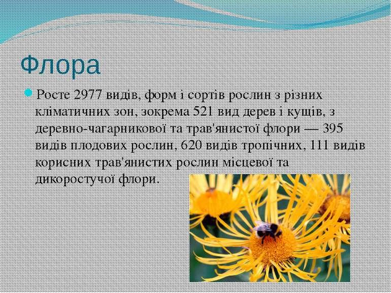 Флора Росте 2977 видів, форм і сортів рослин з різних кліматичних зон, зокрем...