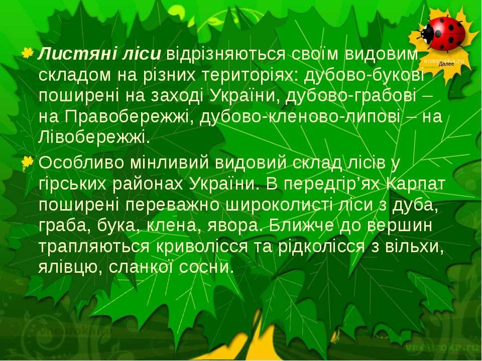 Листяні лісивідрізняються своїм видовим складом на різних територіях: дубово...
