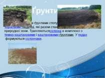 Найпоширенішими ґрунтами степу єчорноземи звичайнітачорноземи південні, як...