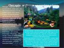 Онтаріо наймальовничіше місто Онтаріо - відомий своєю незвичайною природою: т...