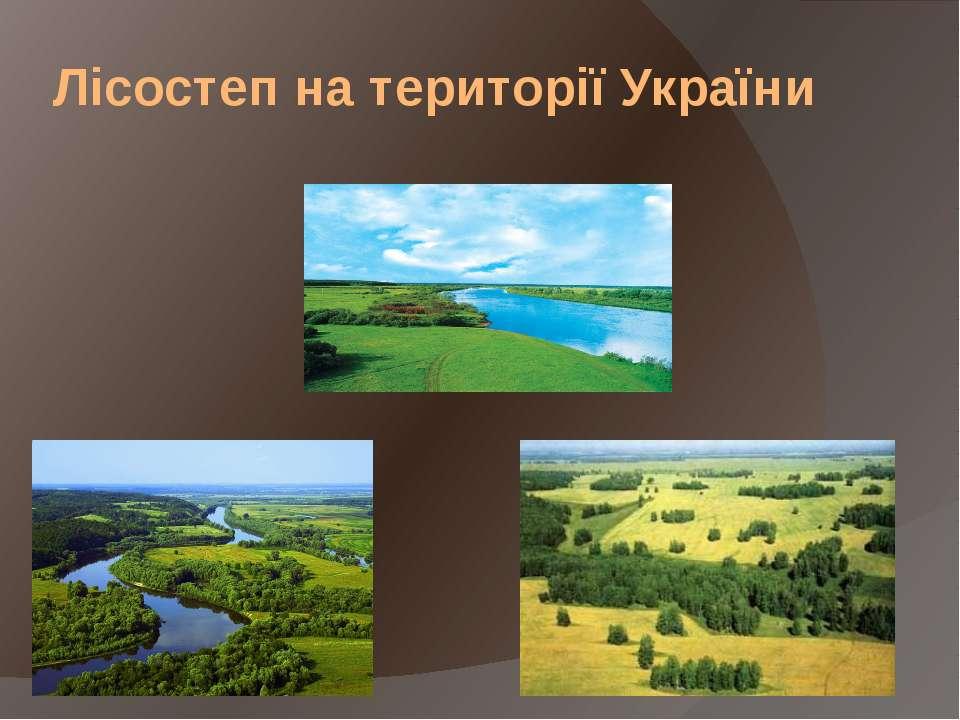 Лісостеп на території України