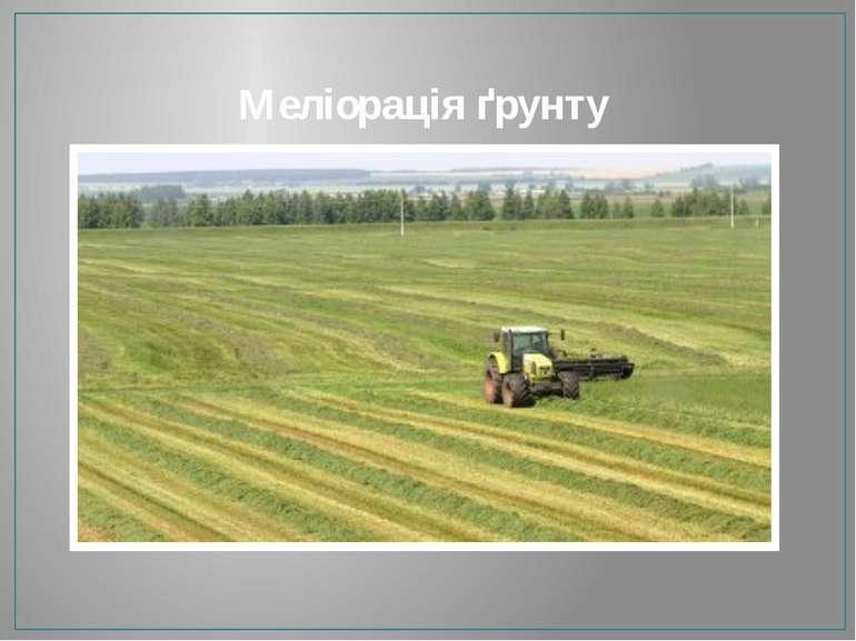 Меліорація ґрунту
