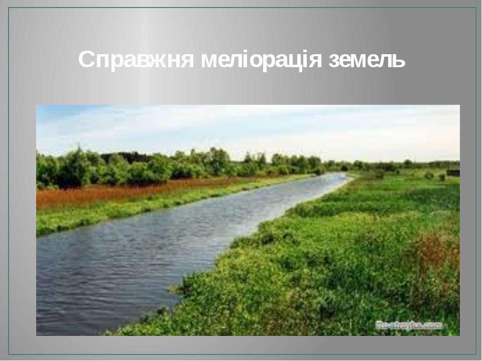 Справжня меліорація земель