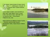 У заповіднику зареєстровано 43 види ссавців, 169 — птахів, 17 — земноводних і...