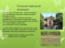 Поліський природний заповідник Полі ський приро дний запові дник — природно-з...