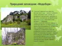 Природний заповідник «Медобори» У рельєфі Подільської височини чітко виступає...