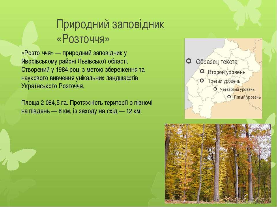 Природний заповідник «Розточчя» «Розто ччя» — природний заповідник у Яворівсь...