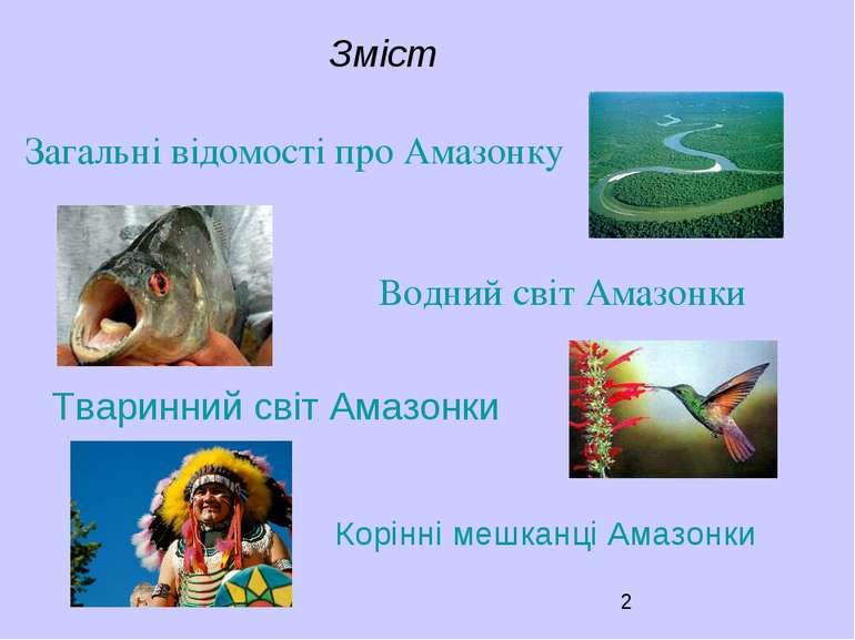 Зміст Загальні відомості про Амазонку Тваринний світ Амазонки Водний світ Ама...