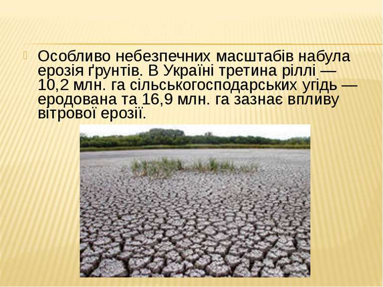 Особливо небезпечних масштабів набула ерозія ґрунтів. В Україні третина ріллі...