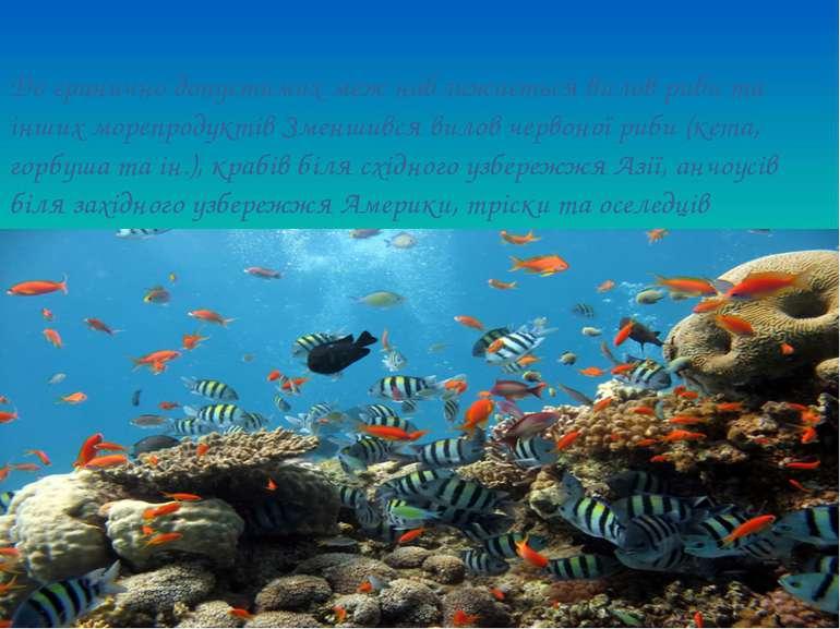 До гранично допустимих меж наближається вилов риби та інших морепродуктів Зме...