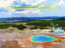 Озера в Йеллоустонськом парку відрізняються різними відтінками води від зелен...