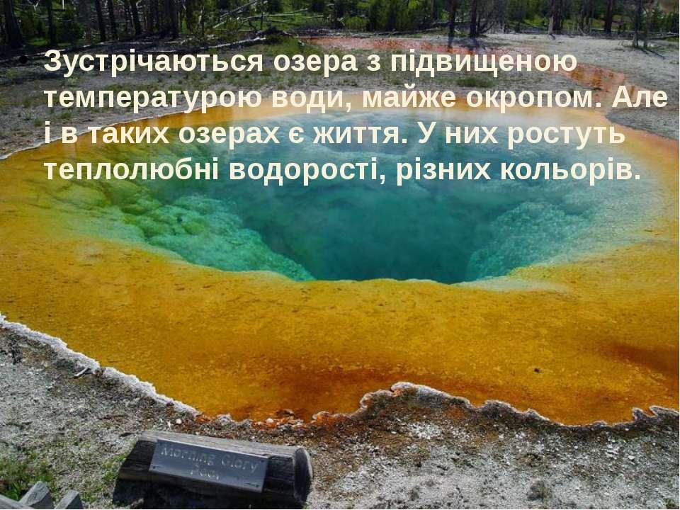Зустрічаються озера з підвищеною температурою води, майже окропом. Але і в та...