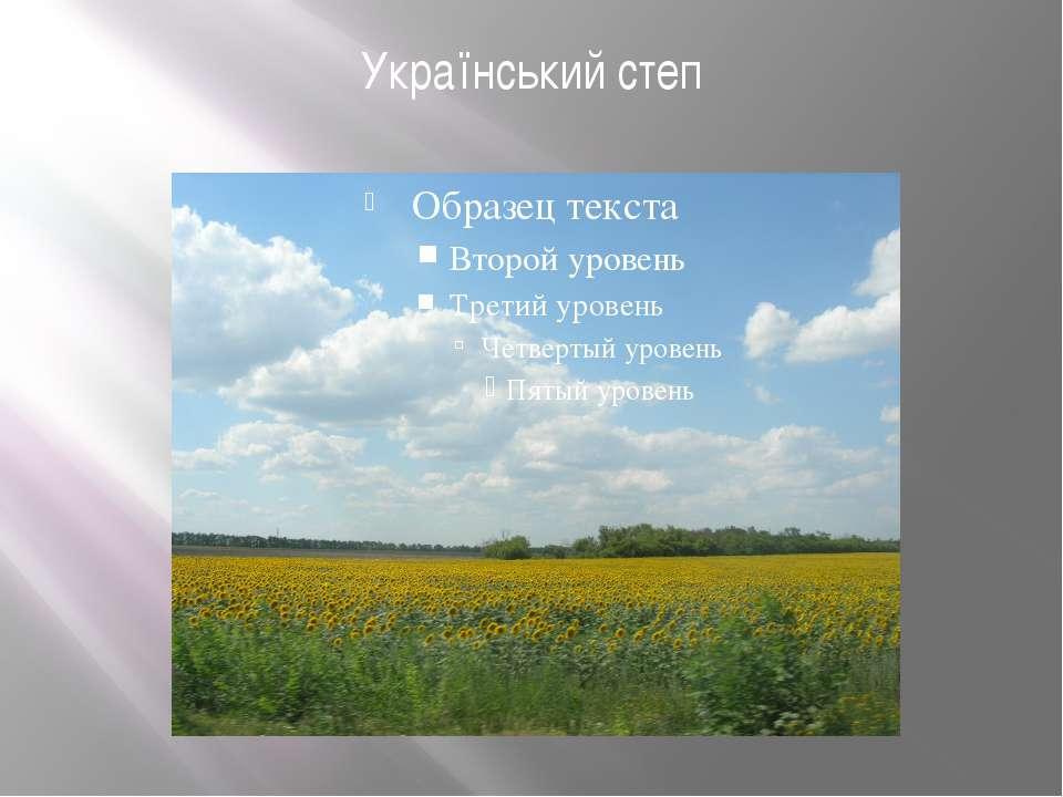 Український степ