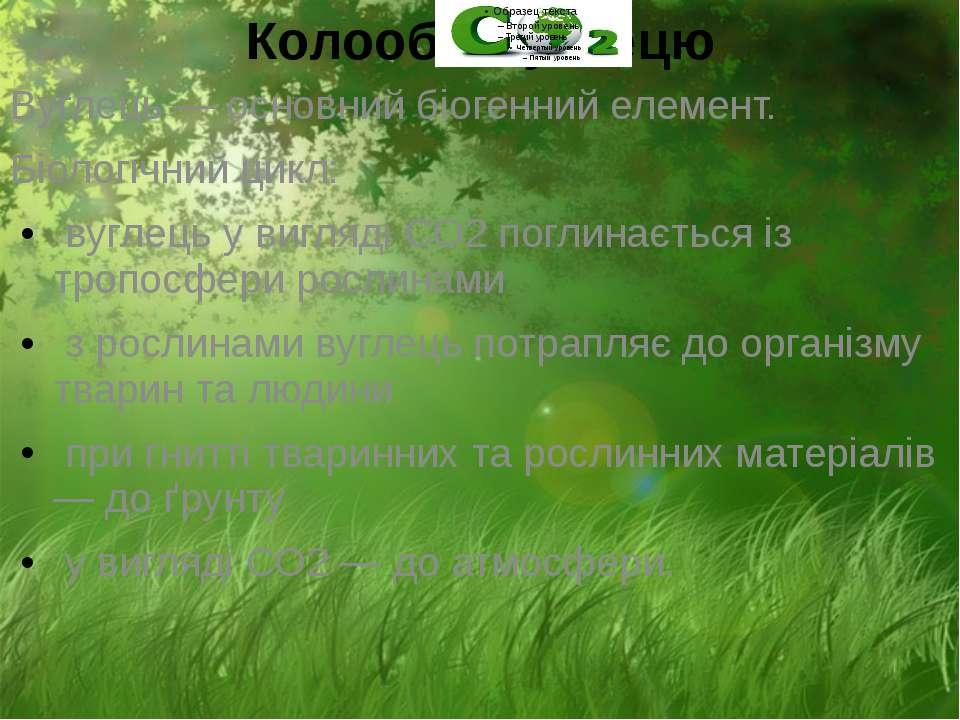 Колообіг вуглецю Вуглець — основний біогенний елемент. Біологічний цикл: вугл...