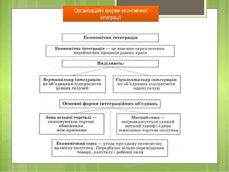 Організаційні форми економічної інтеграції