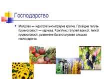 Господарство Молдова — індустріально-аграрна країна. Провідна галузь промисло...