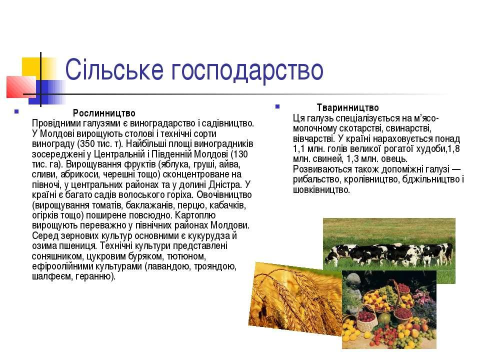 Сільське господарство Рослинництво Провідними галузями є виноградарство і сад...