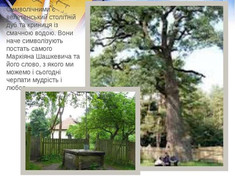 Символічними є велетенський столітній дуб та криниця із смачною водою. Вони н...