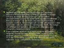 Значний збиток лісам, рослинності лугів і пасовищ наносить підвищений вміст у...