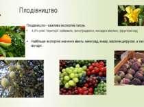 Плодівництво 4,9% усієї території займають: виноградники, посадки маслин, фру...