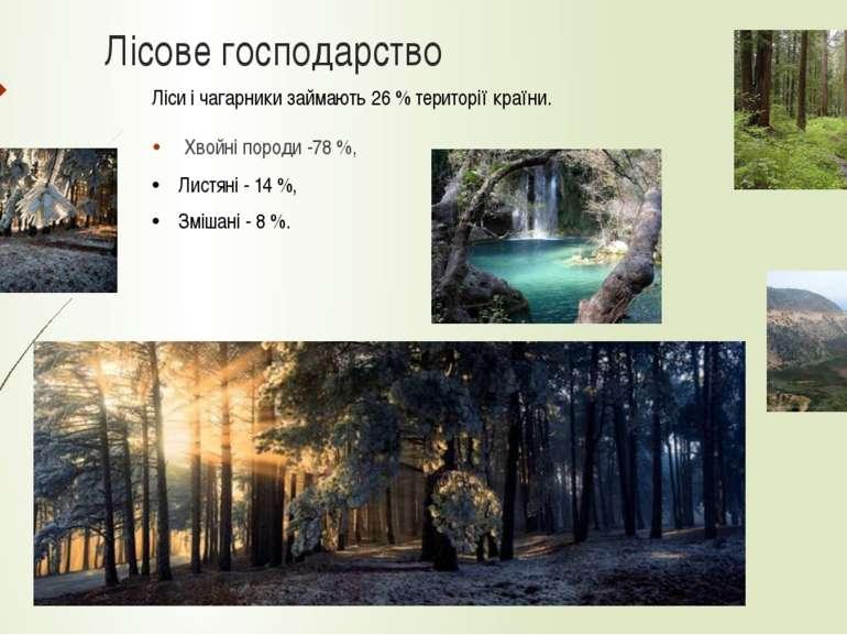 Лісове господарство Хвойні породи -78 %, Ліси і чагарники займають 26 % терит...