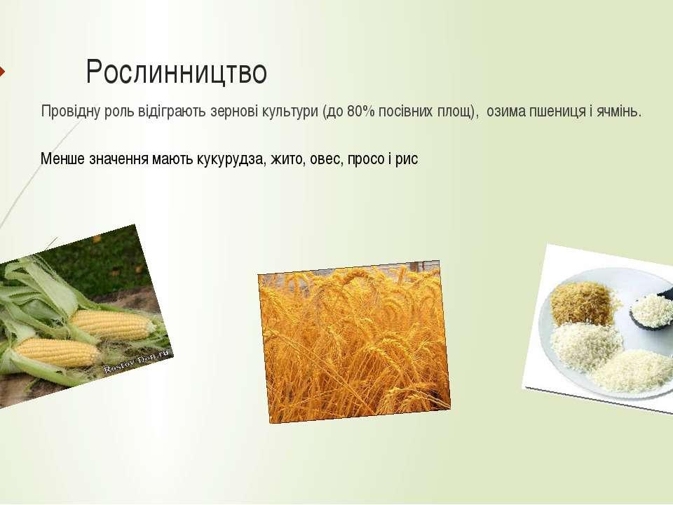 Рослинництво Провідну роль відіграють зернові культури (до 80% посівних площ)...