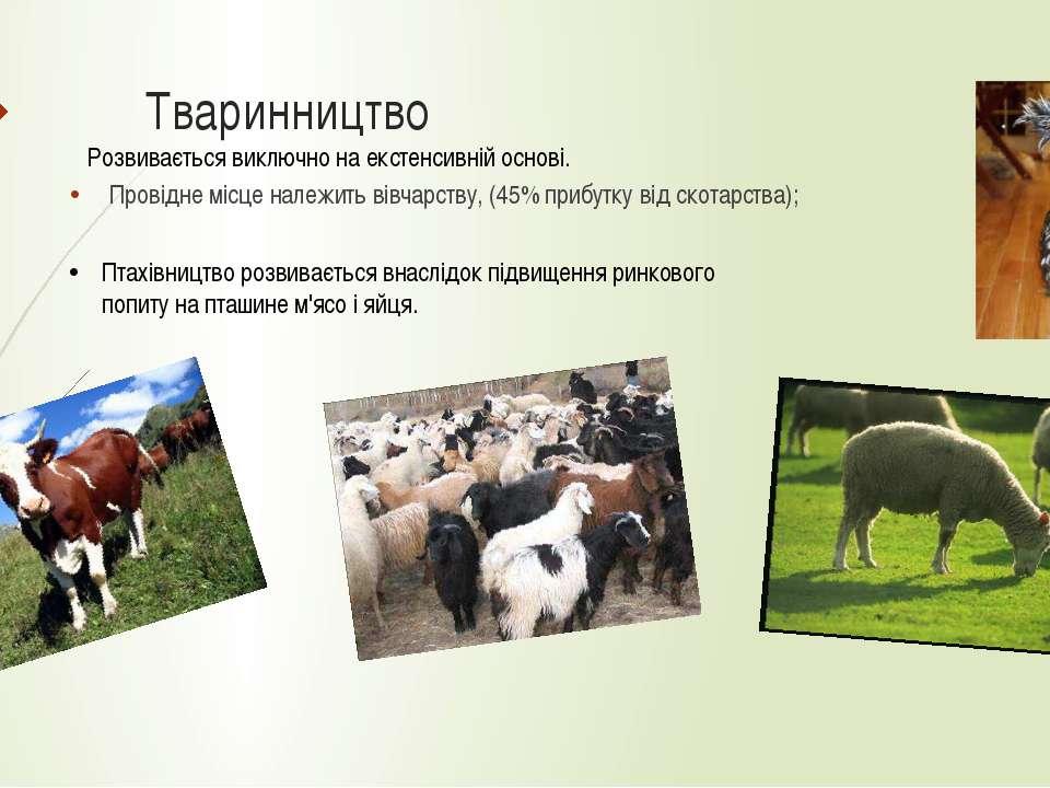 Тваринництво Провідне місце належить вівчарству, (45% прибутку від скотарства...