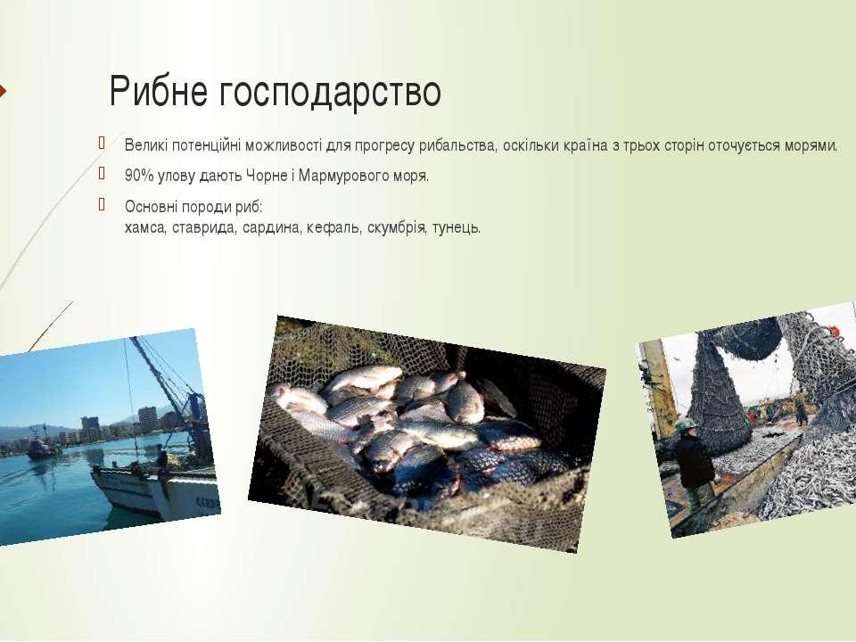Рибне господарство Великі потенційні можливості для прогресу рибальства, оскі...