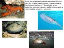 Рибні ресурси Франції сильно виснажені. Більшу частину улову в річках і озера...